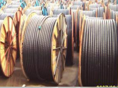 0.61KV聚氯乙烯绝缘电力电缆